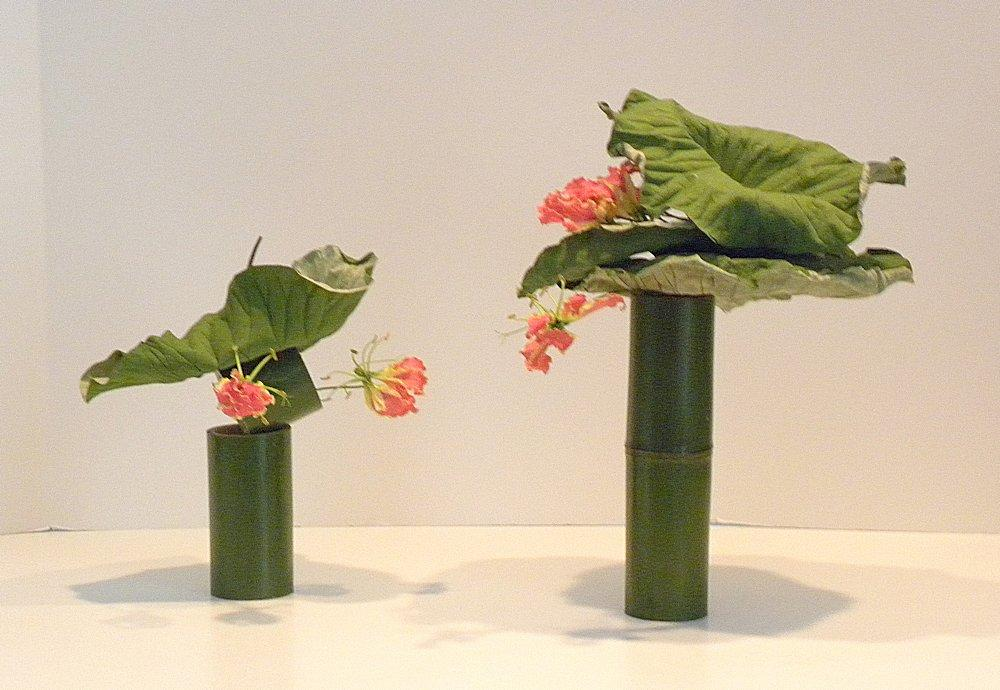 Bamboo & Lotus Leaves by Elaine Jo